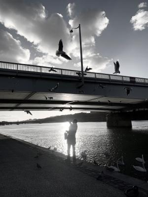 Homme sur les quais du Rhône